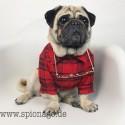Rot kariertes Hemd fürn Mops Französisch Bulldog Shirt Bulldoge, cool aussehende Hund Sommerkleidung Katze Tierkleidung